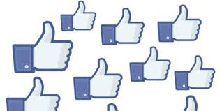 page facebook voisinage