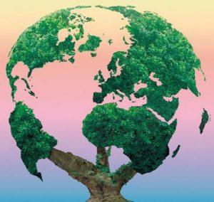 éducation à l'environnement